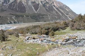 Arthur's Pass, un chemin de randonnée dans la nature