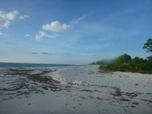 Bird Island, une des seules îles coraliennes (abordable pour le porte-monnaie) de l'archipel...