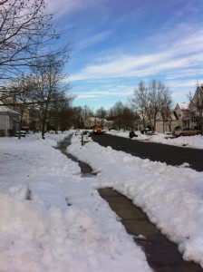 Une photo de mon quartier typique des banlieues campagnardes américaines, avec en fond le typique bus jaune de l'école qui arrive!