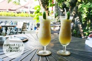Cheers ! Indonésie 2013