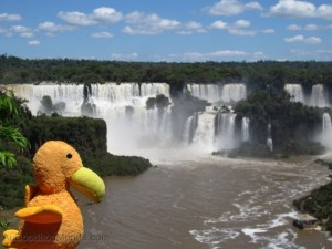 Moris à Iguazu