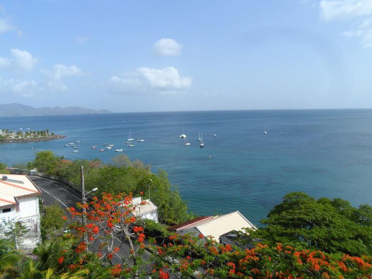 L'interview de Élodie, en Martinique