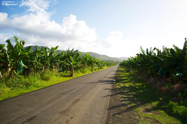 L'interview de Marjorie, en Martinique