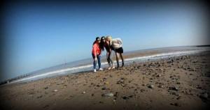 hornsea près de Hull en février