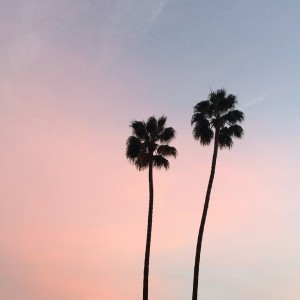 Coucher de soleil Beverly Hills