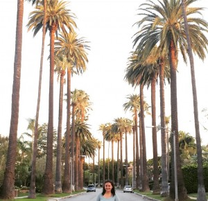 Palms Drive