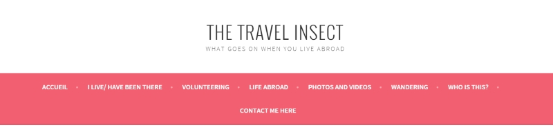 thetravelinsect