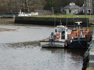westport harbour port
