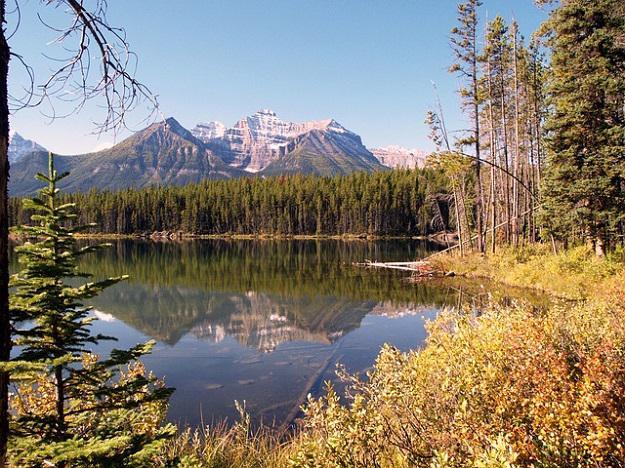 L'écotourisme au Canadapour un voyage insolite