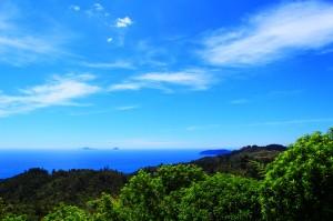 Sur la route de la péninsule de Coromandel, il y a plein d'endroit ou s'arrêter pour faire une pause sur la route, la photo en fait partie.
