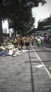 Le festival antillais sur l'avenue des colonnes du trône, 75012