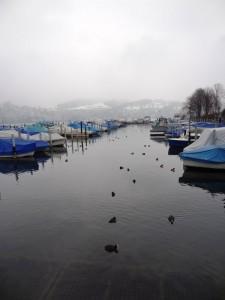 Le Port de Lucerne