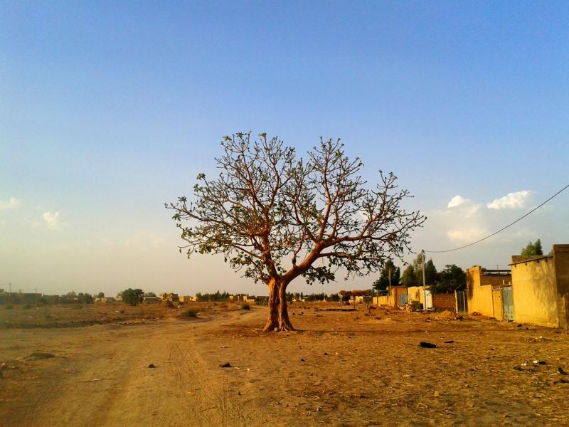 L'interview de Lucile, au Burkina Faso