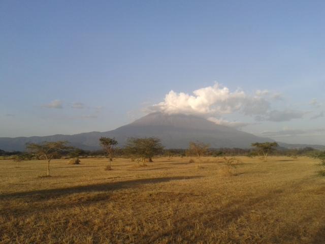 L'interview de Cynthia, en Tanzanie