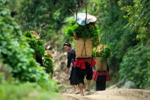 Une femme, au Nord du Viêt Nam