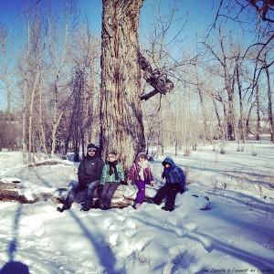 Fish Creek Parken - hiver