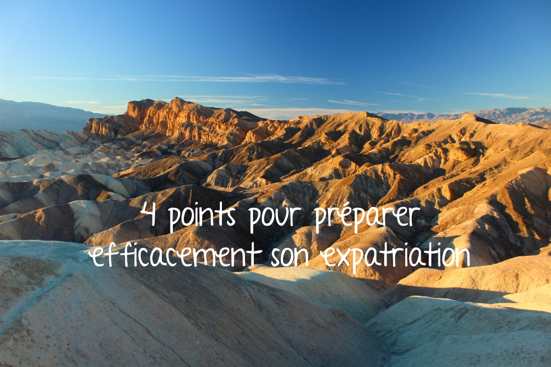4 points pour pr u00e9parer efficacement son expatriation