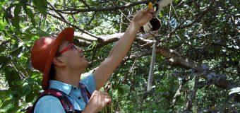 L'interview de Simon, à Madagascar